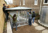 John Ramos (right) and his crew install a palatial, pre-built chicken coop in the backyard of Suzy Batiz's Old East Dallas home.(Tom Fox/Staff Photographer)