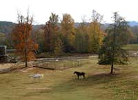 French Broad River Outpost Ranch is a breathtaking 346-acre ranch and old West-themed hotel in Del Rio where you can go horseback riding, whitewater rafting and tubing. (Robin Soslow)