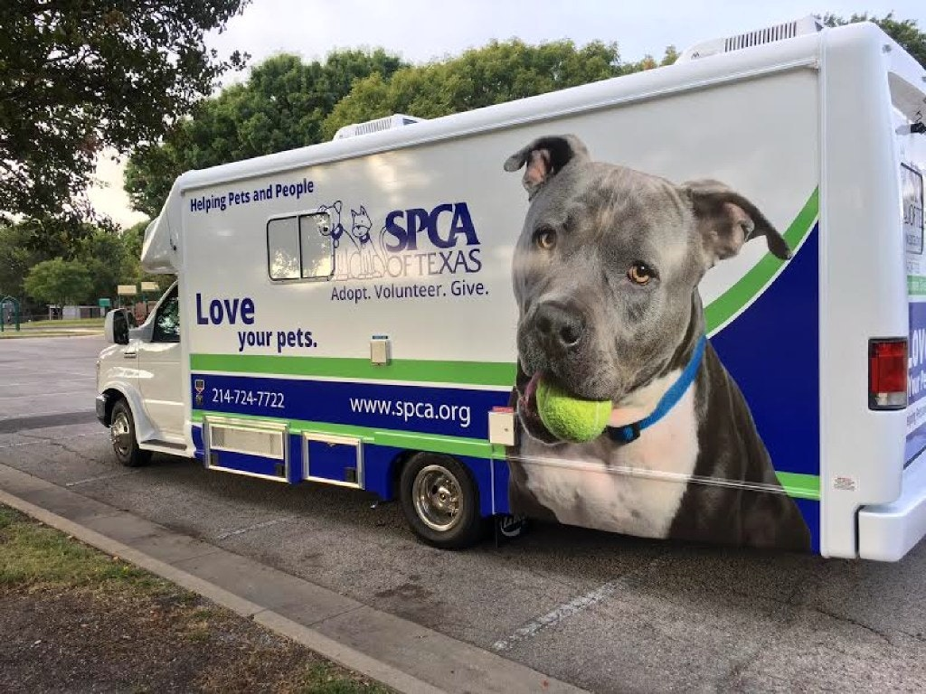 Private Donors Raise 13 5m For Massive Spay And Neuter