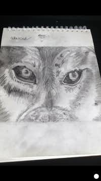 Alexis Brown likes drawing wolf's eyes because of the detail required.((Crystal Brown))