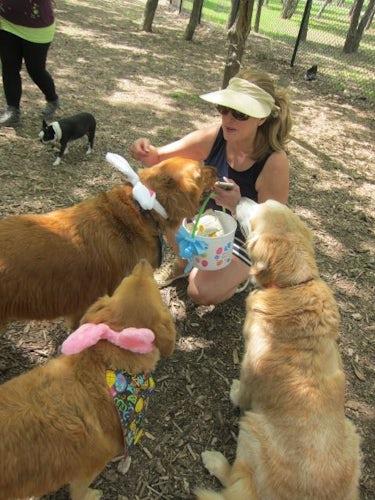 Dog Park North Fort Worth