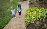 Inez Beltran (right), 3, and Nina Toler-Wells, 2, walk on the trail at Twelve Hills Nature Center in Dallas. Both are enrolled in Seed Preschool, which meets in a refurbished bus. (Jae S. Lee/The Dallas Morning News)(Staff Photographer)