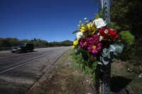 Flowers mark the area where 13 people died in a head-on collision involving a truck and a bus full of seniors from First Baptist Church of New Braunfels in March. The driver of the truck told a witness after the crash that he had been texting when he drifted into the path of the oncoming van.<div><br></div><div><br></div>(John Davenport/San Antonio Express-News)