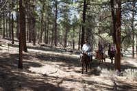Horseback riding at Angel Fire resort in Taos(New Mexico Tourism Department)