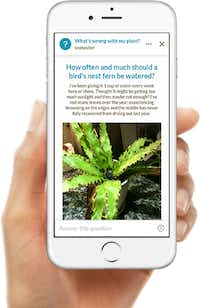 Get answers on the Grow It! app.((Grow It!))