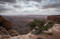 The San Juan River marks the southern edge of the 1.35 million-acre Bears Ears National Monument in Utah, designated by President Barack Obama last December. President Trump on Wednesday ordered the Interior Department to review national monuments created since 1996.(Mark Holm/The New York Times)