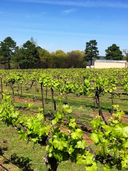 3 award winning texas wineries where you can stay the night texas