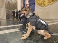 A Dallas K9 officer models a ballistics vest similar to those a donation will pay for.