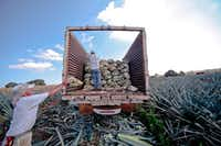 Agave is placed on a truck in Mexico for Suro Imports. ((Suro Imports))