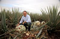 David Suro-Pinera, president of Suro Imports, a restaurateur and a tequila aficionado, kneels amid agave plants in Mexico. ((Suro Imports))