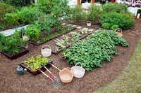 Last fall, tools were laid out and prepped for the harvest at the White House Kitchen Garden in Washington, D.C.(National Park Service)