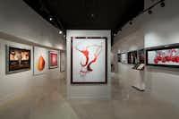 Modernist Cuisine Gallery in Las Vegas(Modernist Cuisine Gallery, LLC)