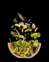 Salad cutaway at Modernist Cuisine Gallery in Las Vegas(Chris Hoover/Modernist Cuisine Gallery, LLC)