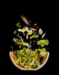 Salad cutaway at Modernist Cuisine Gallery in Las Vegas(Chris Hoover/Modernist Cuisine Gallery, LLC)