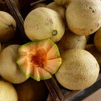 Heirloom cantaloupe is one of dozens of items you can sample before you buy at the Grapevine Farmers Market.(Kim Pierce/Special Contributor)