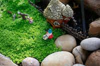 Kimberly Atchley placed a small fairy village by her backyard pond.(Ron Baselice/Staff Photographer)