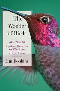 The Wonder of Birds, by Jim Robbins.(Spiegel & Grau)