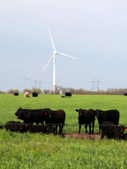 0f72cdfac8e8 While California, New York push hard on clean energy, Texas hopes the  market is enough