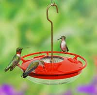An easy-clean, saucer-style hummingbird feeder by Cole's Wild Bird Feed offers several ports for communal dining.(HANDOUT/MCT)