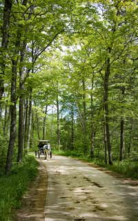 No cars are allowed on Mackinac Island, so horse-drawn carriages provide the transportation.(Michael Hiller)