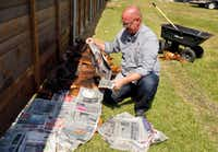 Daniel Cunningham drapes wet newspaper over homemade compost and wet cardboard.(Tom Fox/Staff Photographer)