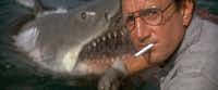 Chief Martin Brody (Roy Scheider) needs to pay attention when he's throwing out shark food.(Universal Pictures)
