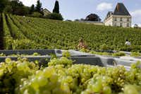 "<p><span style=""font-size: 1em; background-color: transparent;"">Crates of chardonnay grapes at Moet and Chandon's Château de Saran in France.</span></p>(Philippe Eranian)"