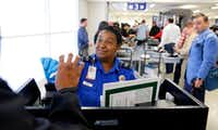TSA agent Michelle Bender checks a person's license at the newly renovated security checkpoint in Terminal A at DFW International Airport. (File Photo/Tom Fox)