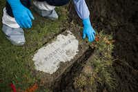 Calvary Hill Cemetery worker Andres Buenrostro removes the headstone of the Rev. Rudolph Zimanyi before the monk's remains were lifted from the grave he had occupied for nearly 23 years.(Smiley N. Pool/Staff Photographer)