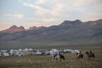 Antelope Island's annual bison roundup in Utah.(Wesley Aston)