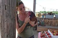 Lola the Pig at Lola's Local Market in Melissa doesn't come out in the heat of the day, but owner Mona Fleming also has a flock of chickens, some so friendly you can hold them. (Kim Pierce/Special Contributor)
