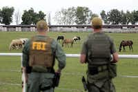 <p>FBI agents surveyed an Oklahoma horse ranch connected to Jose Trevino in 2012. (File Photo/The Associated Press) </p>