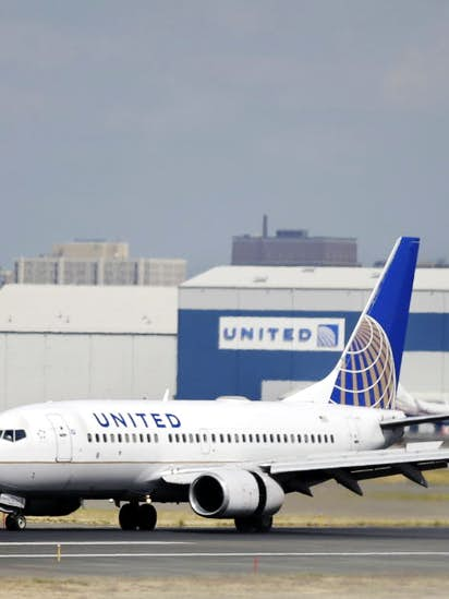 Houston family's dog dies in cargo hold of delayed United