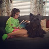 Katie Damm and Margie the Scottish terrier(Tyra Damm)