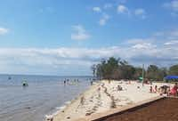 Fontainebleau State Park in Mandeville, half an hour from Covington, La., is a great spot to take a picnic lunch from Covington Farmers Market. It offers a beach, a pier and a pond in which an alligator luxuriates. (Helen Anders)