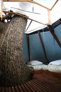 The crow's nest in the Majestic Oak Treehouse at Savannah's Meadow(Rose Baca/Staff Photographer)