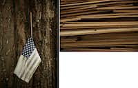 Surrounded by dumped debris, an American flag hangs from a tree's crevice in the Meyerland neighborhood.(Andy Jacobsohn/Staff Photographer)