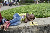 A'Niyah Thompson, 3, takes a nap after the pooch parade during the Easter in Lee Park event, hosted by the Lee Park and Arlington Hall Conservancy and the City of Dallas on April 16, 2017. The annual Easter event hosted a dog parade, food trucks, live music and plenty of family-friendly activities.(Ben Torres/Special Contributor)