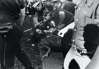 """Brent Stein, a.k.a. """"Stoney Burns,"""" is arrested April 12, 1970 by Dallas Police officers at Lee Park. <i>The Dallas Morning News</i> at the time reported that """"a clash between law officers and young people occurred when police tried to arrest several hippie-types"""" at the park.(© Shel Hershorn)"""