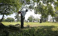 Charles Cook, groundskeeper at Olivewood Cemetery in Houston, works at cutting the grass around a toppled headstone on Sunday, September 10, 2017. (Louis DeLuca/Staff Photographer)