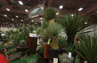 The West Texas plants display at Texas Nursery and Landscape Association expo (Louis DeLuca/Staff Photographer)