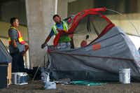 Hazardous material workers rip up a tent after the city closed a large homeless encampment under Interstate 30 on Third Avenue in Dallas on July 25.(Nathan Hunsinger/Staff Photographer)