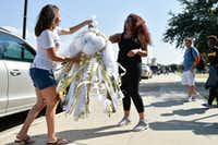 Sherry Bedinger, the chair of the Denton High School mum fundraiser, hands a mum to student Shay Edmond at Denton High School on Wednesday. (Jeff Woo/Denton Record-Chronicle)