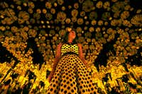 Lyza Hernandez looks at Yayoi Kusama's installation: 'All the Eternal Love I Have for the Pumpkins,' at the Dallas Museum of Art in Dallas on Sept. 22, 2017. (Nathan Hunsinger/Staff Photographer)