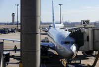 An American Airlines plane is parked at a Terminal A gate at Dallas-Fort Worth International Airport.(Tom Fox/Staff Photographer)
