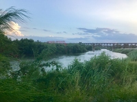 <p>Critics say President Donald Trump's proposed wall would affect relations with Mexico as well as the natural environment along the border, including this section of Laredo. (Alfredo Corchado/Staff)</p>