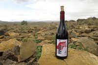 Neuras wine with the lodge's large animal reserve in the background. (Michaela Urban/Special Contributor)