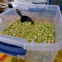 "<p><span style=""font-size: 1em; background-color: transparent;"">These cream peas are from the Bever family's Highway 19 Produce in Athens.</span></p>(Kim Pierce/Special Contributor)"