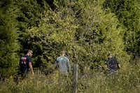 Police head into a wooded area as they search for Sherin Mathews last week on the campus of Richland College in Dallas.(Smiley N. Pool/Staff Photographer)