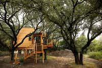 The tree house was featured on the Animal Planet show <i>Treehouse Masters</i>.(Andy Jacobsohn/Staff Photographer)